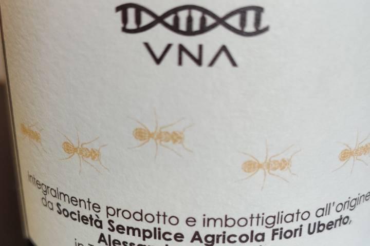 VNA Wine Bianco fermo N1 Cortese