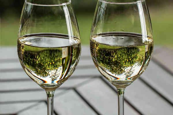 Venezia Giulia IGT: il Friuli in un bicchiere
