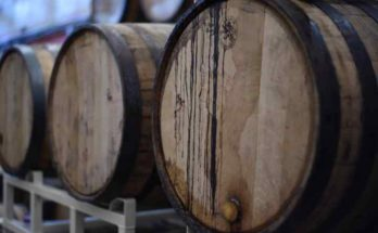investire vini pregiati