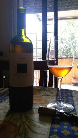 Mlecnik Chardonnay 2008