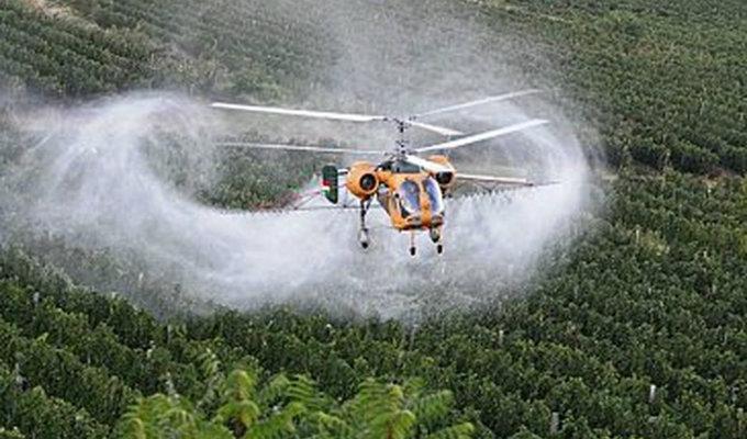 Prosecco e pesticidi